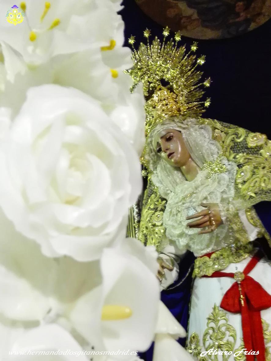 2016 Besamanos Virgen Alvaro Frias (11)