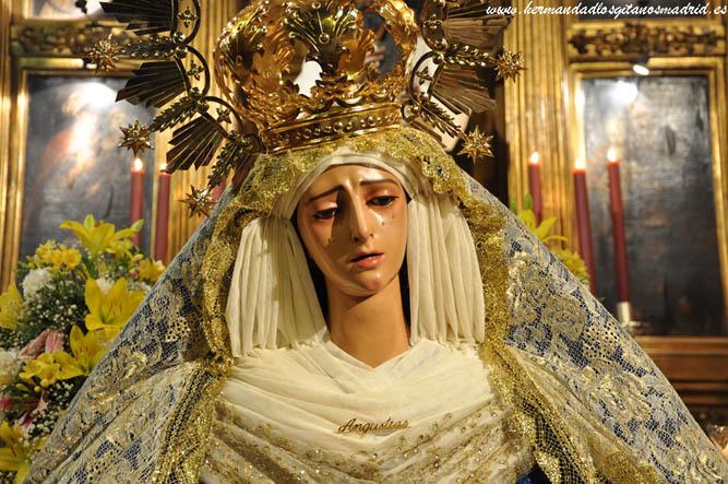 Besamanos de la Virgen 2014 (06)