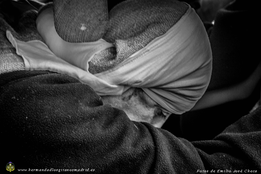 Ensayo 25/01/ 2015 Foto: Emilio J. Checa (10)